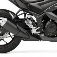 YZF R3 Engine Guard