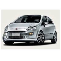 Fiat Punto Evo 1.3 Emotion 90 hp Picture