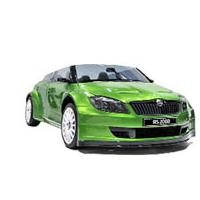 Skoda RS2000 Picture