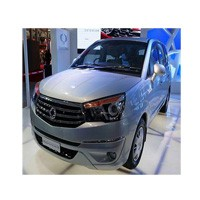 Ssangyong Rodius Picture