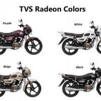 Tvs Radeon Colours In India Tvs Radeon Colors Vickyin