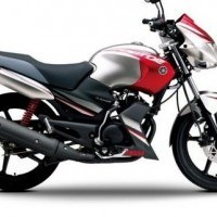 Gladiator 125cc Colour 02
