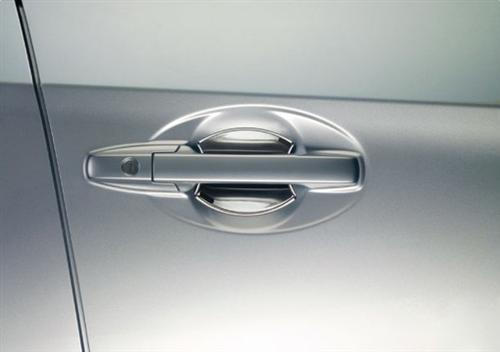 Chrome Door Protector
