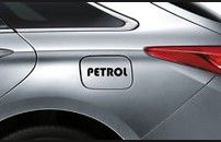 Fuel Lid Graphic-Petrol Light
