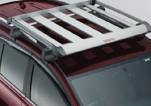 Roof Basket