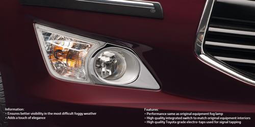 Fog Lamp with Fitting Kit - All Weather Illumination