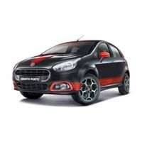 Fiat Abarth Punto Picture