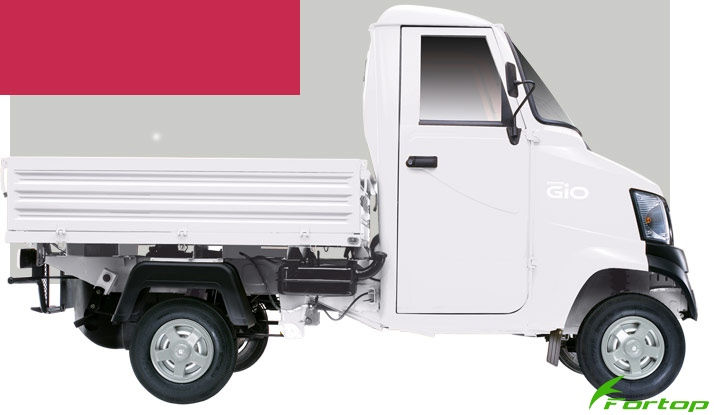 Mahindra Gio Colour White