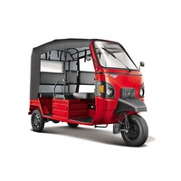 Mahindra 	Electric Alfa Mini Picture